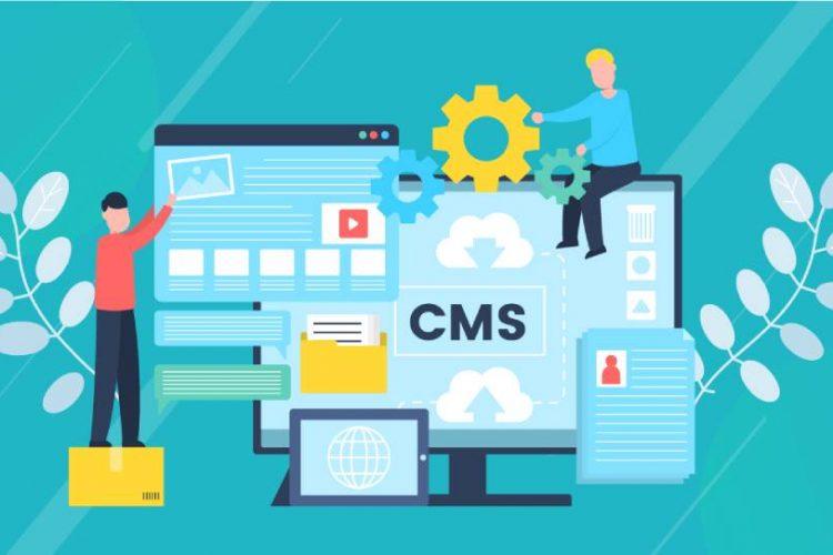 CMS Web Develop